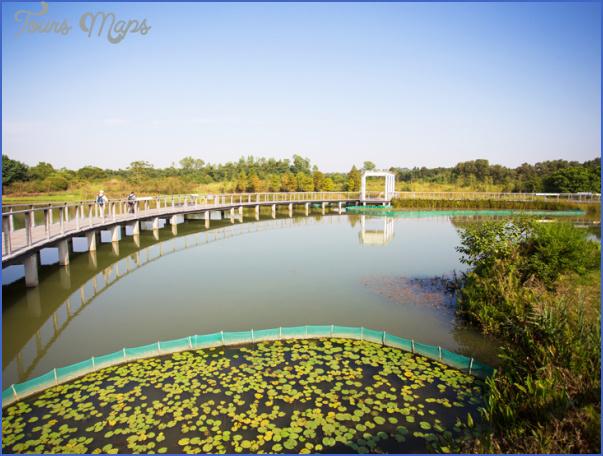 mangrove forest national park shenzhen 14 MANGROVE FOREST NATIONAL PARK SHENZHEN