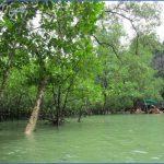 mangrove forest national park shenzhen 16 150x150 MANGROVE FOREST NATIONAL PARK SHENZHEN