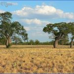 traveling in gran chaco 8 150x150 Traveling in Gran Chaco