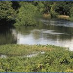 visit to gran chaco 0 150x150 Visit to Gran Chaco