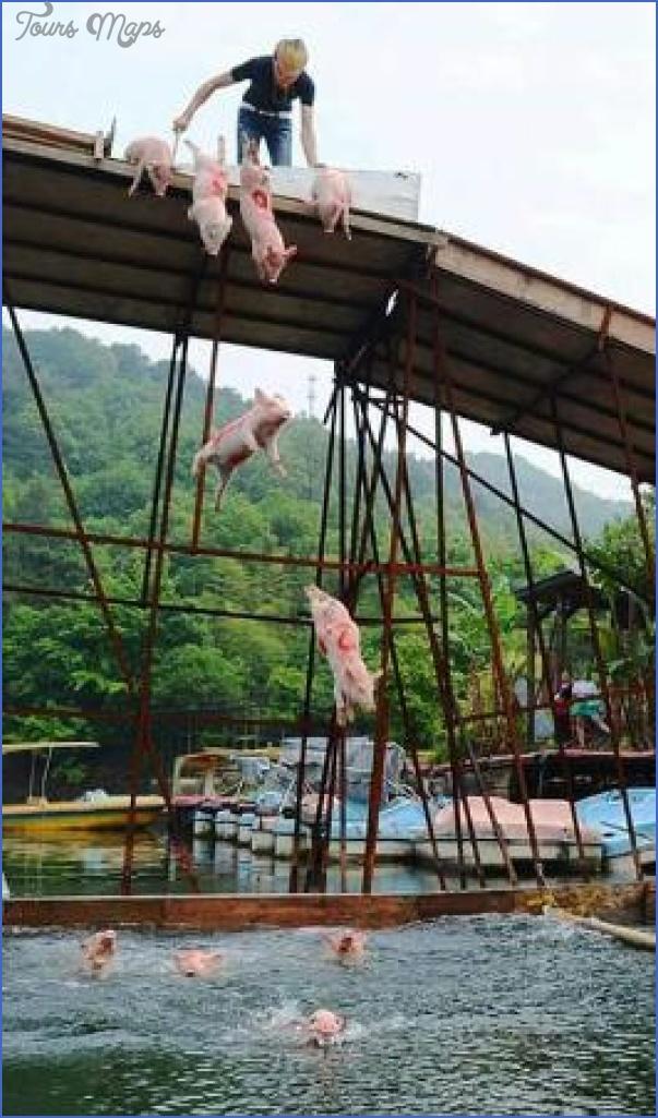 yangtai mountain and shiyan hot springs shenzhen 7 YANGTAI MOUNTAIN  AND SHIYAN HOT SPRINGS SHENZHEN