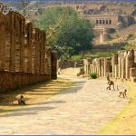 Alwar – the city that provides a detailed glance on Rajasthan's royal history_2.jpg