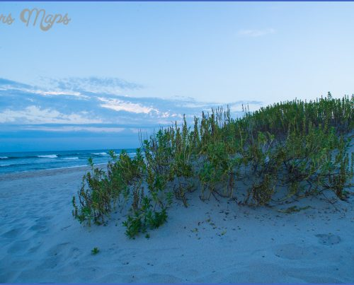 CAPE LOOKOUT NATIONAL SEASHORE_13.jpg