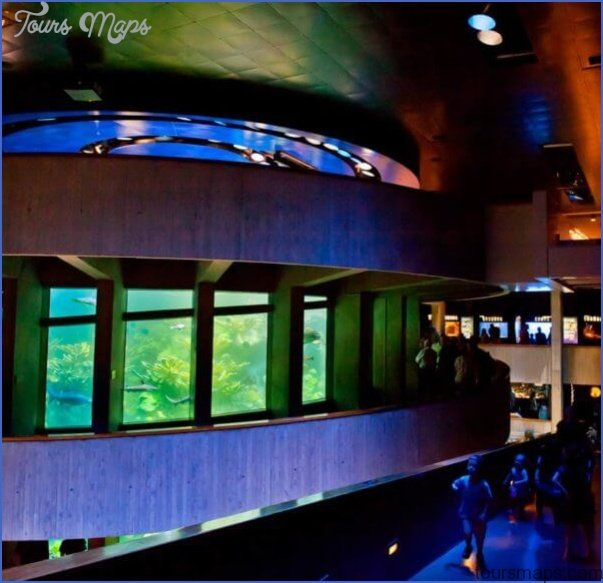 1 Day Boston Tour & New England Aquarium Package