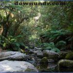 Tasmania Guide for Tourist_17.jpg
