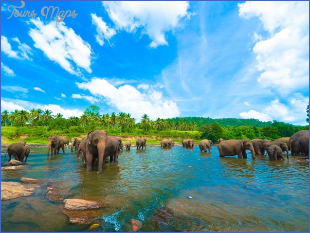 top things to do in srilanka 1 Top Things to do in Srilanka