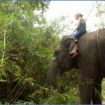 Tour Guide Asia – A Rich Cultural Experience_11.jpg