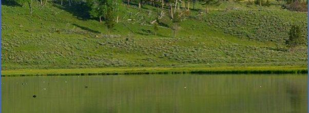 Traveling to Swan Lake _10.jpg