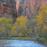 visit to zion national park 16 150x150 Visit to Zion National Park