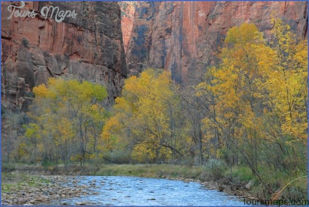 visit to zion national park 16 Visit to Zion National Park