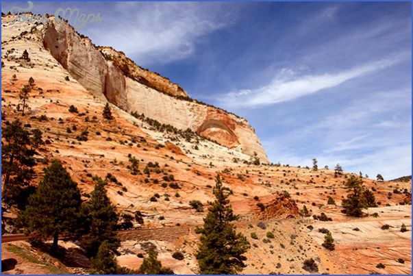 Visit to Zion National Park_17.jpg