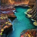 Visit to Zion National Park_18.jpg