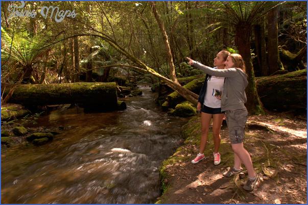 weekend getaway to mt field tasmania 7 Weekend Getaway to Mt. Field, Tasmania