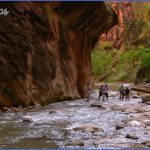 zion national park guide for tourist  29 150x150 Zion National Park Guide for Tourist