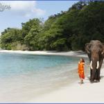 best beaches in australia for wedding and honeymoon 14 150x150 Best Beaches In Australia For Wedding And Honeymoon