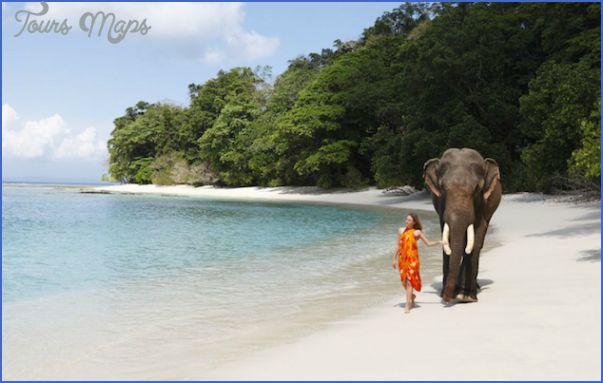 best beaches in australia for wedding and honeymoon 14 Best Beaches In Australia For Wedding And Honeymoon