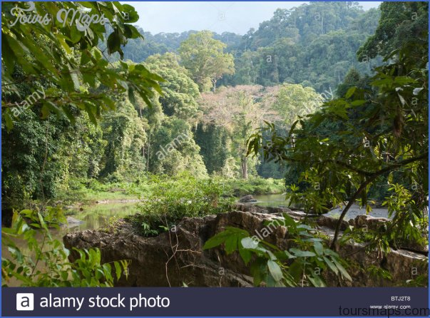 Borneo, Malaysia_6.jpg
