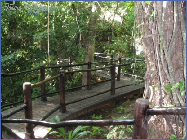 rainforest spa at sugar beach a viceroy resort 6 Rainforest Spa at Sugar Beach, A Viceroy Resort