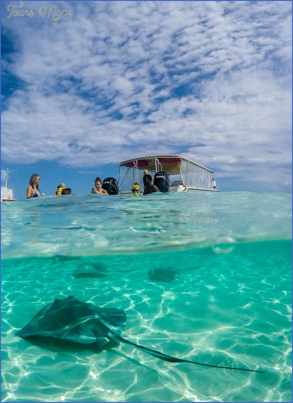 the top 3 things to do in grand cayman 23 The Top 3 Things to Do in Grand Cayman