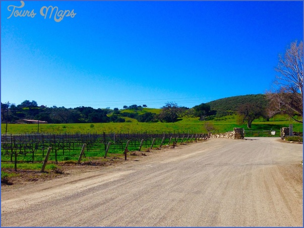 Visit the Santa Ynez Valley_7.jpg
