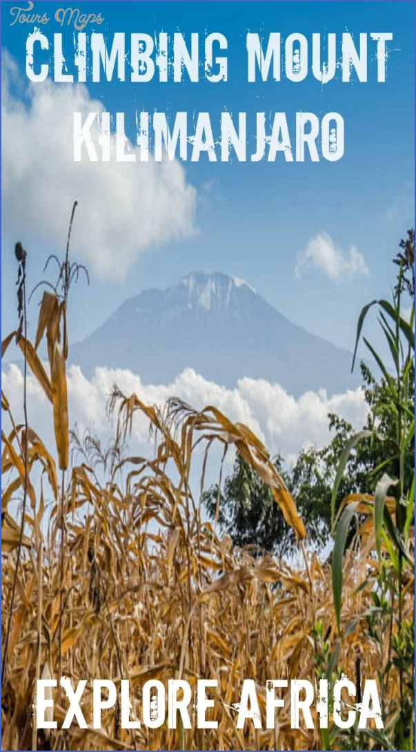 you have all the reasons to climb mount kilimanjaro dont miss it 5 You Have All the Reasons to Climb Mount Kilimanjaro   Dont Miss It