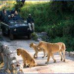 africa national wildlife travel 11 150x150 Africa National Wildlife Travel