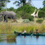 africa top wildlife travel destinations  3 150x150 Africa Top Wildlife Travel Destinations