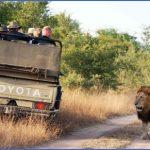 africa top wildlife travel destinations  8 150x150 Africa Top Wildlife Travel Destinations