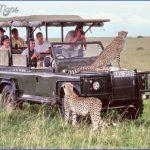 africa wildlife travel tours 10 150x150 Africa Wildlife Travel Tours