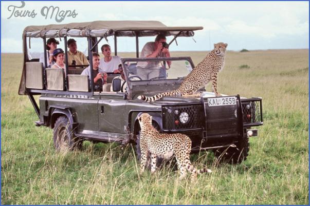 africa wildlife travel tours 10 Africa Wildlife Travel Tours