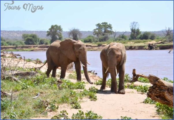 africa wildlife trust travel  18 Africa Wildlife Trust Travel