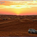 Arabian Safari_0.jpg