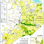 Bialowieza Map_6.jpg