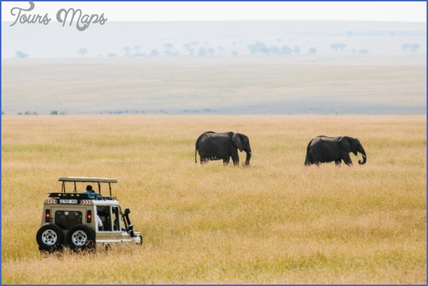 Kenya Nature Wildlife And Travel Photographer_7.jpg