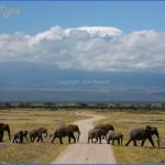 Kenya Nature Wildlife And Travel Photography_15.jpg