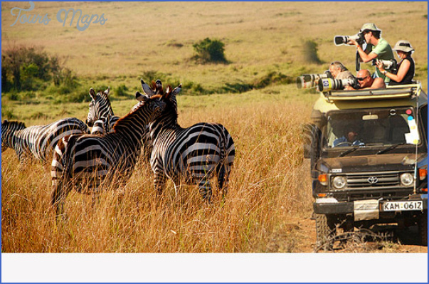 kenya wildlife travel packages  0 Kenya Wildlife Travel Packages