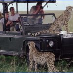 kenya wildlife travel packages  4 150x150 Kenya Wildlife Travel Packages