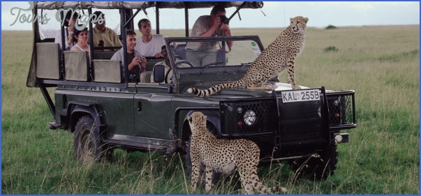 kenya wildlife travel packages  4 Kenya Wildlife Travel Packages