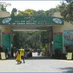 Mumbai Wildlife Travel Guide _2.jpg