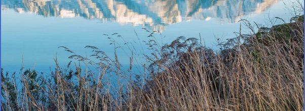 Nature Wildlife And Travel Photographer_20.jpg