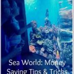seaworld orlando planet explorers travel tips 16 150x150 SeaWorld Orlando Planet Explorers Travel Tips