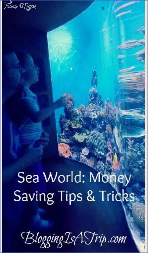 seaworld orlando planet explorers travel tips 16 SeaWorld Orlando Planet Explorers Travel Tips