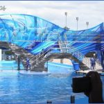 seaworld orlando shows 10 150x150 SeaWorld Orlando Shows
