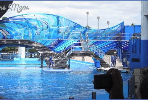 SeaWorld Orlando Shows_10.jpg