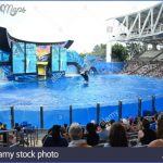 seaworld orlando shows 4 150x150 SeaWorld Orlando Shows