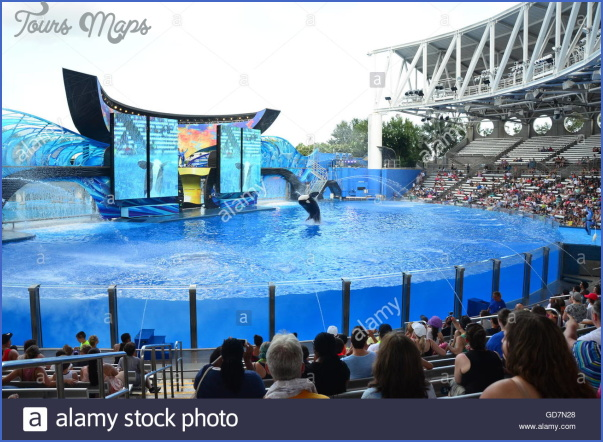 seaworld orlando shows 4 SeaWorld Orlando Shows