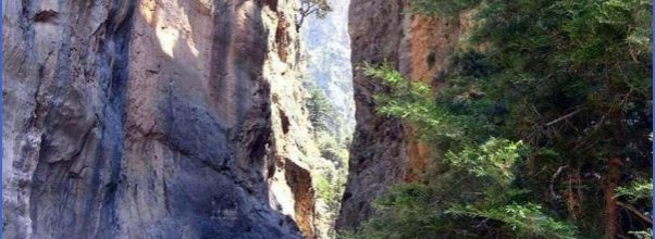 The Samaria Gorge_6.jpg