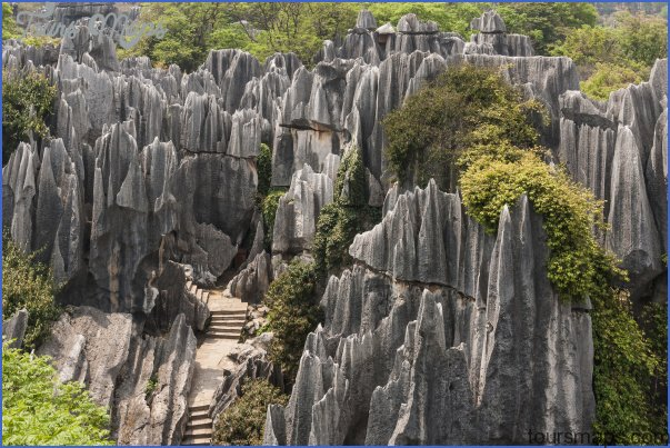 The Stone Forest China_1.jpg