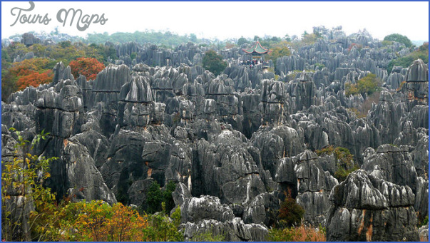 The Stone Forest China_2.jpg