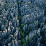The Stone Forest China_3.jpg